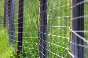 Zaun aus Maschendraht um Wiese