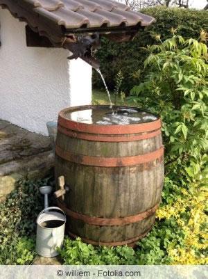 regentonne, regenfass - tipps zur regenwassernutzung im garten,