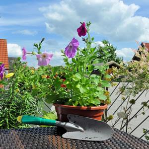 Balkongestaltung - Ideen Und Tipps Für Schöne Balkone Ideen Balkongestaltung Pflanzen