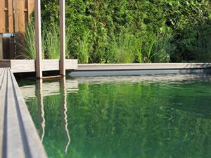 schwimmteich selber bauen anleitung und kosten. Black Bedroom Furniture Sets. Home Design Ideas