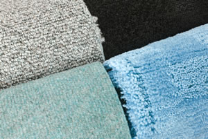 Teppichkäfer  Teppichkäfer bekämpfen - Mittel gegen Larven & Käfer