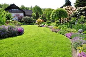 Garten selbst anlegen  Garten anlegen & gestalten - Grundlagen für Einsteiger