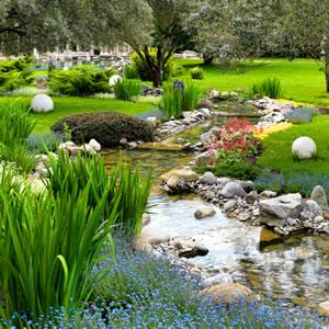 Garten Anlegen & Gestalten - Grundlagen Für Einsteiger Englischer Garten Anlegen