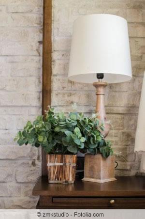 pflanzen im schlafzimmer tipps f r die richtigen zimmerpflanzen. Black Bedroom Furniture Sets. Home Design Ideas
