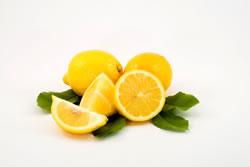 Zitronen dank Veredelung
