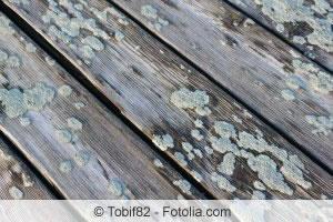 terrassenplatten reinigen moos und algen von terrasse. Black Bedroom Furniture Sets. Home Design Ideas