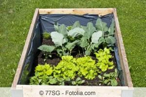 hochbeet richtig schichten bef llen und bepflanzen. Black Bedroom Furniture Sets. Home Design Ideas