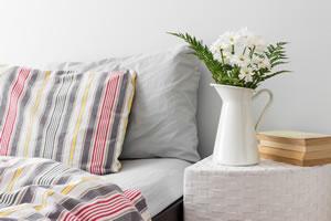 bettwanzen erkennen und bek mpfen. Black Bedroom Furniture Sets. Home Design Ideas