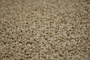 teppichk fer bek mpfen mittel gegen larven k fer. Black Bedroom Furniture Sets. Home Design Ideas