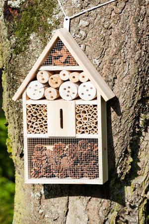 insektenhotel insektenhaus selber bauen anleitung. Black Bedroom Furniture Sets. Home Design Ideas